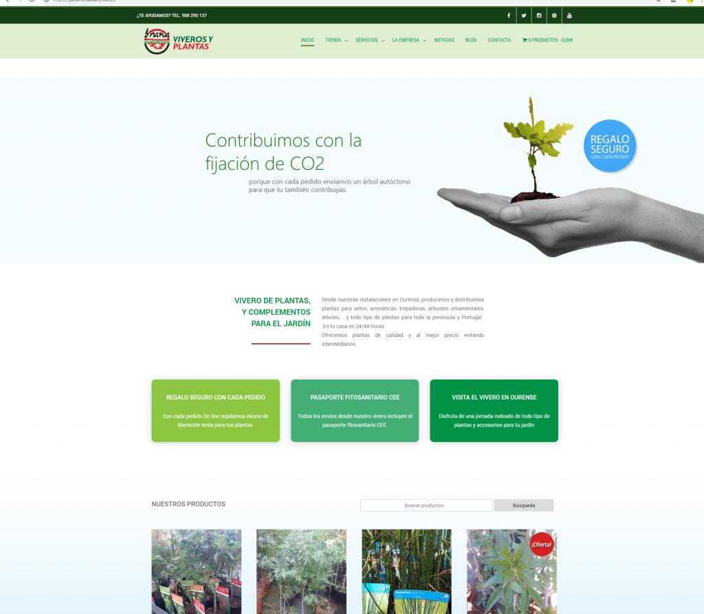 Ejemplo de diseño de una página web con tienda online en 1 idioma hecha para una empresa de Ourense